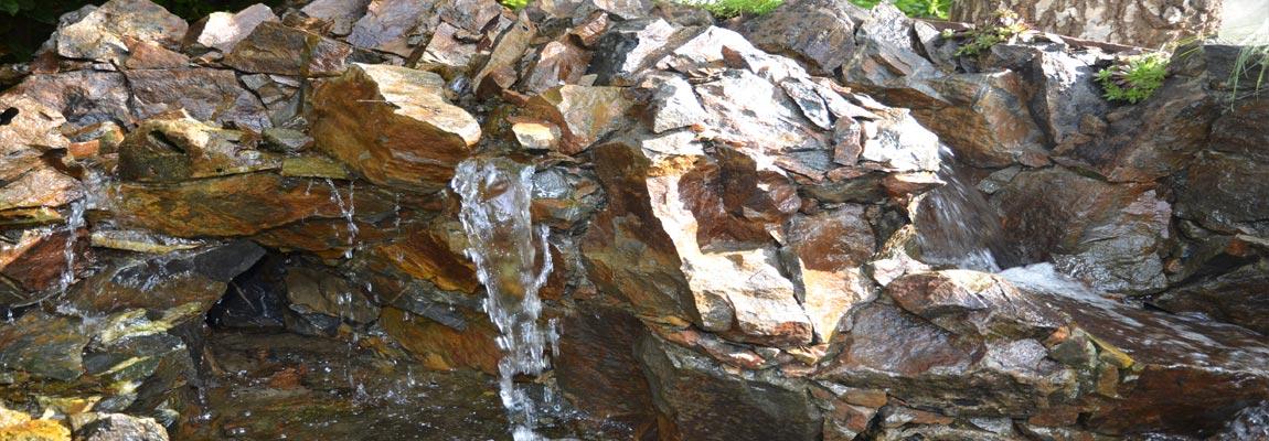 Natuurlijke filters in uw vijver voor helder water de for Natuurlijke vijver zonder pomp