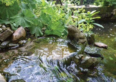 beekmonding-vijverbeek-filteruitstroom-met-water-ordiment