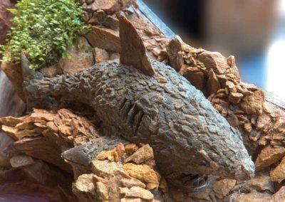 megalodon-haaisculptuur-waterval