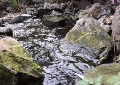 natuurbeek-waterstroom-filter-uitlaad